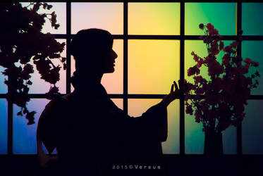 Tradition Kimono by hoangversus