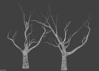 Decayed trees by betasector