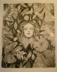 Lotus Pond by lindseycarr