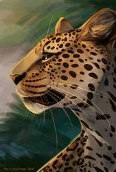 Leopard by Prince-Petrichor