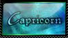Capricorn Starsign by SquallxZell-Leonhart