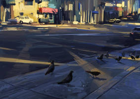 Pigeon by zhuzhu