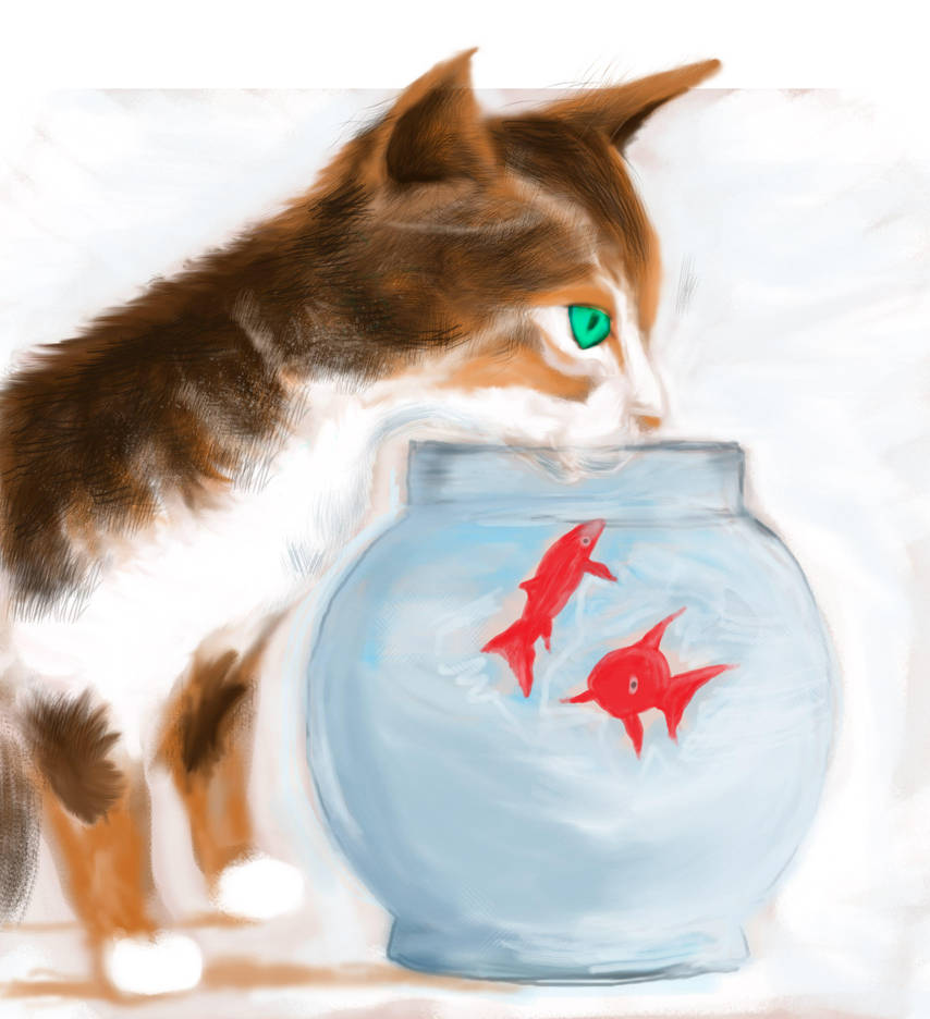 Fish Bowl by philippeL