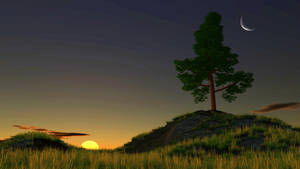 Tree at Dawn by TemanCooke
