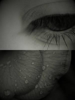 Sorrow. by WistfulAurora