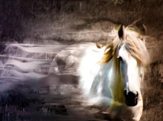 Spirit Horse by rjakobson