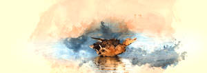Puddle Duck by rjakobson