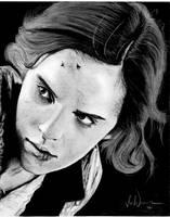 Harry Potter Project: Hermoine Jean Grainger by artbyjoewinkler