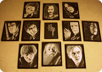 The Harry Potter Project Completed Art Collection by artbyjoewinkler