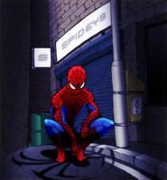 Spideys Spider by thefjk