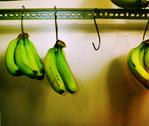 missing banana. by lycheese