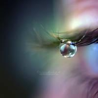 Tears of a Fairy. by OliviaMichalski