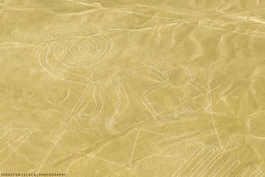 Peru   Nazca Lines by lux69aeterna
