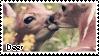 Deer|Stamp by Crvyons