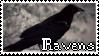 Ravens|Stamp by Crvyons