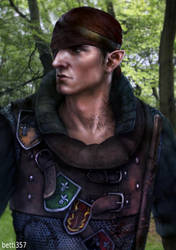 The Witcher 2- Iorveth by betti357