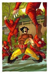 Wolverine by DennisBudd