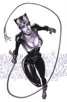 marker_Catwoman by DennisBudd