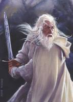 LOTR_Gandalf by DennisBudd