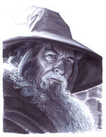 convention sketch 17 Gandalf by DennisBudd