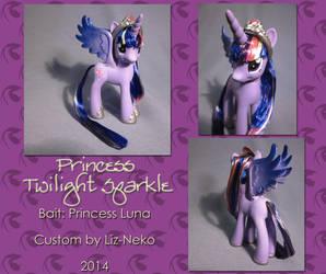 Princess Twilight Sparkle (older version) by liz-neko