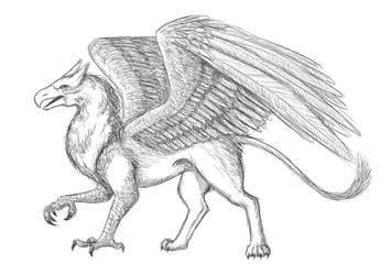 Griffin sketch (WIP) by SeigneurNazgul
