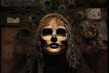 Embodied Ghost by RobertDampier