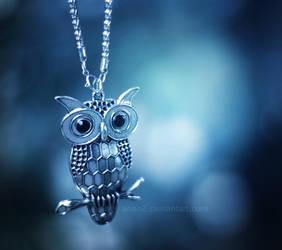Night owl ... by aoao2