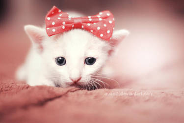 Little princess ... by aoao2