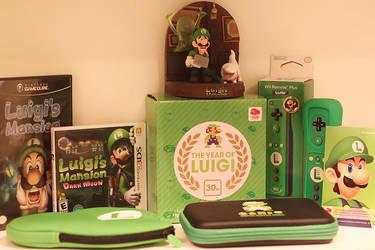 The Year Of Luigi by aoao2