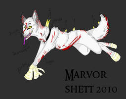 Marvor Shett by fox-men