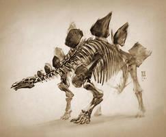 2016 Stegosaurus LANHM by MinohKim