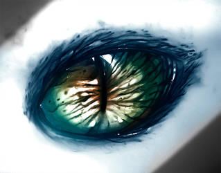 Eye of the hunter by ryky