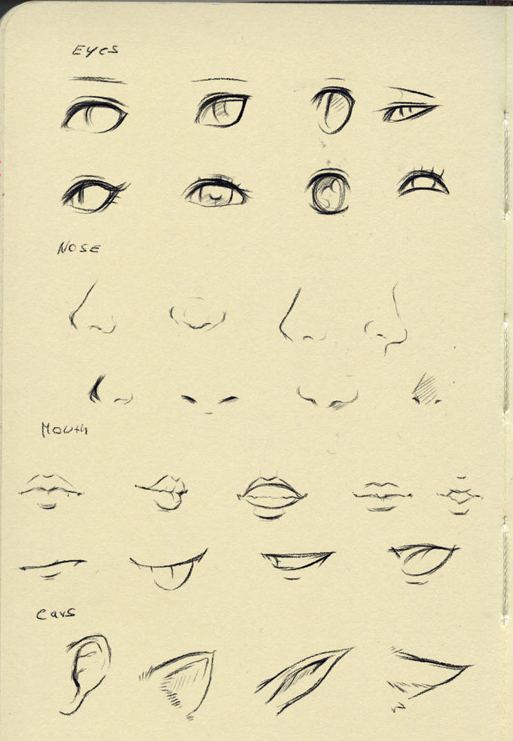 Reference (eyes,nose,mouth,ear) by ryky