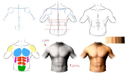 Male anatomy ref by ryky
