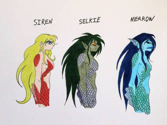 HP FBAWTFT Concept Art: Merpeople Subspecies by Jakegothicsnake