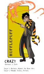 HP House Sorting Meme- Crazy Sorcier du mois by psycocrazysmile