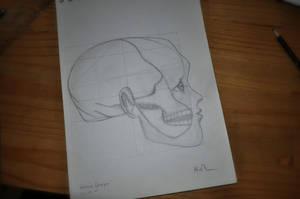 First human head study by HannesDreyer