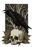 Raven And Skull by TinyDotsOfDeath