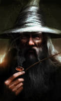 Gandalf the Grey by Leone-art