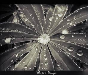 Water Drops 2 by keshuval