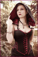 Suedine hooded corset' by Esaikha