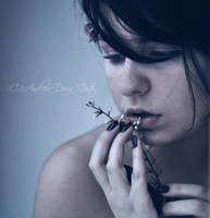 Lost emotion by Tonyna