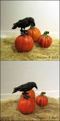 Raven 'Grau' by Maylar
