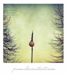 Polaroid. by pasn