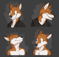 Commission: Scott's Expression Sheet by Temiree
