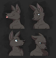 Commission: Asan's Expression Sheet by Temiree