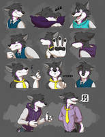 Commission: Tyler's Expression Sheet #3 by Temiree