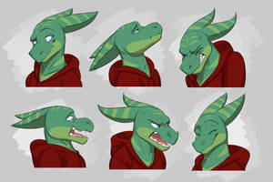 Commission: Sky's Expression Sheet by Temiree