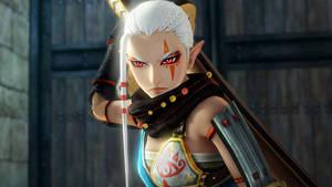 Hyrule Warriors: Impa by IchigoXXRukia